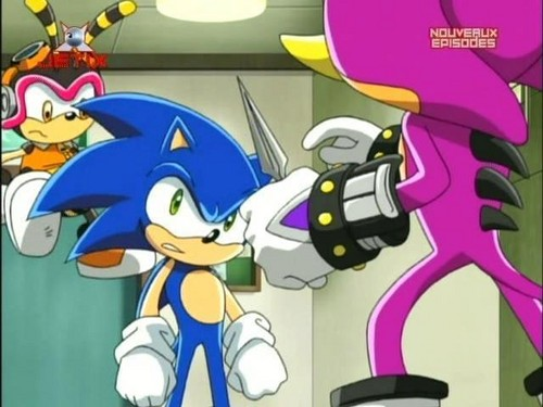 Soinc VS Team Chaotix