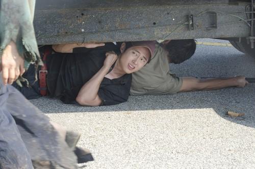 Steven Yeun karatasi la kupamba ukuta containing an atlantic herring titled Steven Yeun Walking Dead