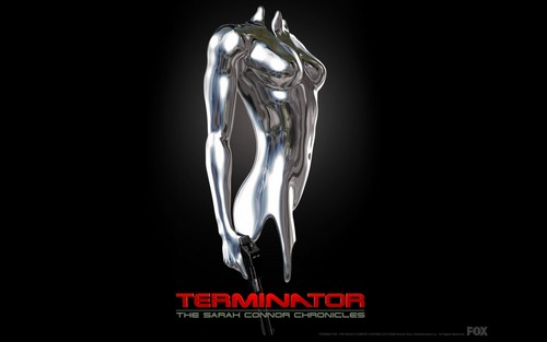 Terminator TSCC