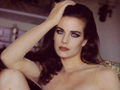 Terry Farrell  - terry-farrell wallpaper