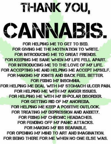 Thank You Cannabis