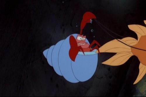 The Little Mermaid-Sebastin the کیکڑے, کیکڑا