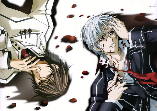 Anime Hintergrund with Anime titled Vampire Knight