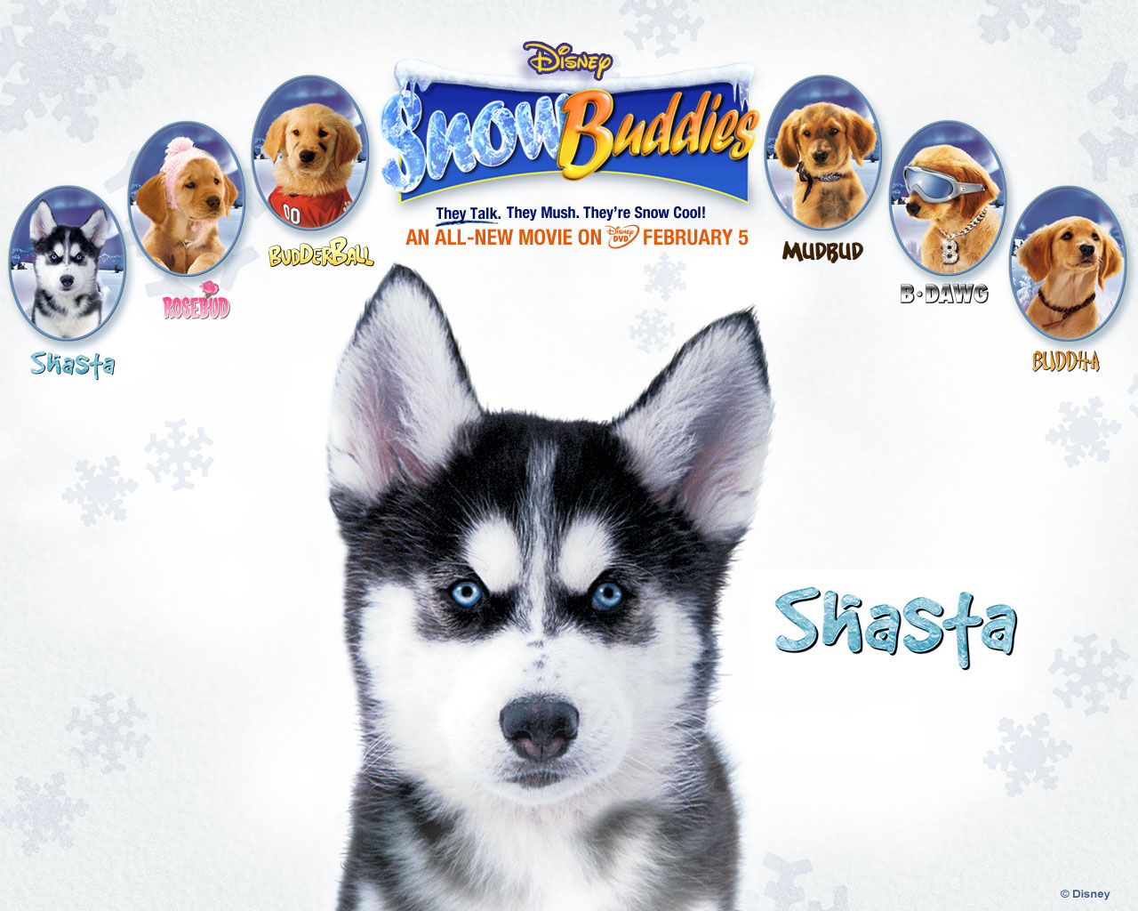Snow Dog Movie Names