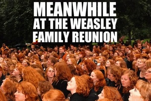 Weasley Family Reunion