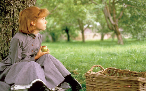 Anne of Green Gables پیپر وال possibly containing a basket and a wicker basket called anne of green gables