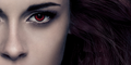 bd part 2 poster Bella's eyes - breaking-dawn-the-movie photo