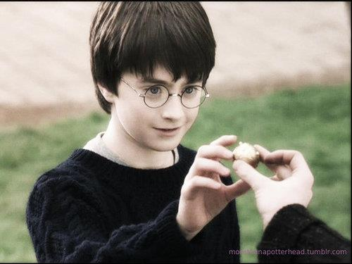 facebook.com/Danielredcliffefanclub - daniel-radcliffe Photo