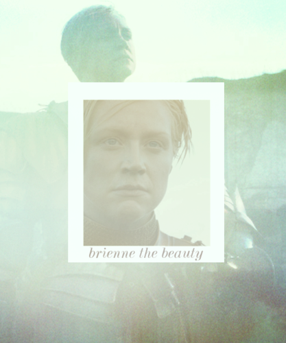 Brienne of Tarth - game-of-thrones Fan Art
