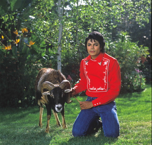 michael and his animales