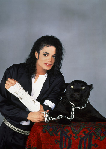 michael and his 동물