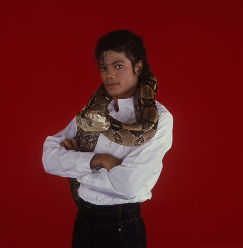 michael and his animaux