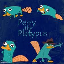 peeerrry!!!