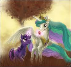 princess celestia and twilight sparkle taking a walk