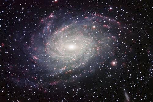 aleatório o espaço