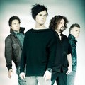 the rasmus *** - the-rasmus photo