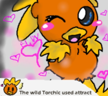 torchic used attract XD