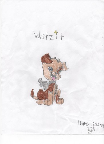 watzit