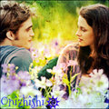 ✰ Edward & Bella ✰ - twilight-series photo