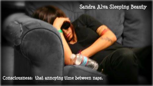 *^*^*Sandra*^*^*