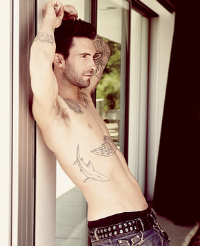 Adam Levine wallpaper with skin entitled Adam Levine