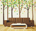 Birds in the 6 Birch árbol with Colorful Leaves muro Sticker