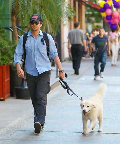 Bradley Cooper Walks His Dog