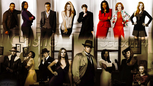 Castle wallpaper entitled Castle Cast