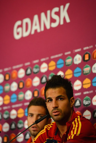 Cesc (Spain) - cesc-fabregas Photo