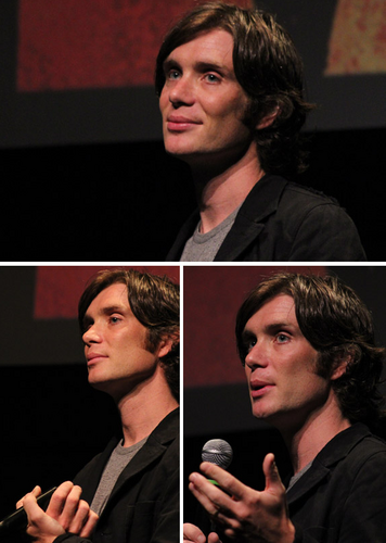 Cillian at 'Red Lights' premiere