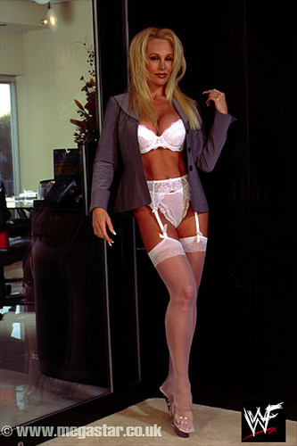 Former WWE Diva... Debra achtergrond possibly containing a zwempak, badpak entitled Debra - A dag at the Office