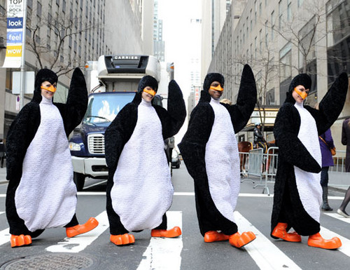 Dudes in chim cánh cụt Luật sư đấu trí