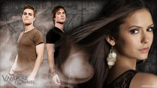 Elena and the Salvatore brothers the vampire diaries