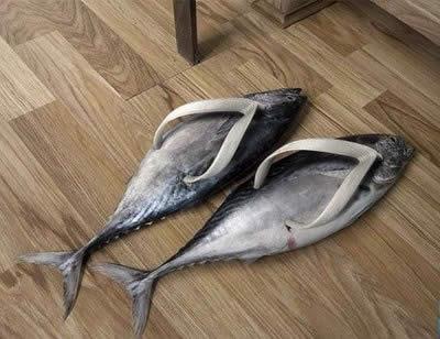 मछली shoes!