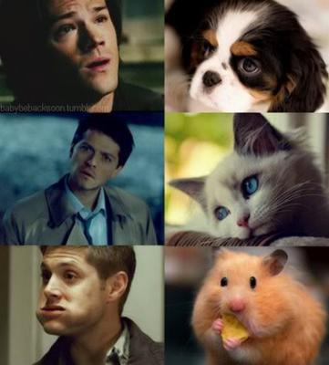 Funny faces - dean-castiel-and-sam Photo