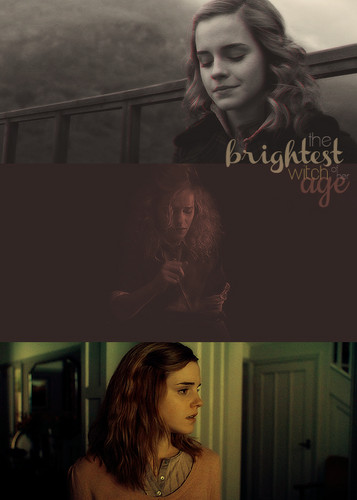 Hermione Granger - harry-potter Fan Art