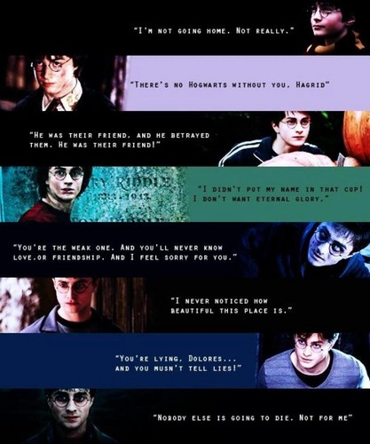 Harry's quotes