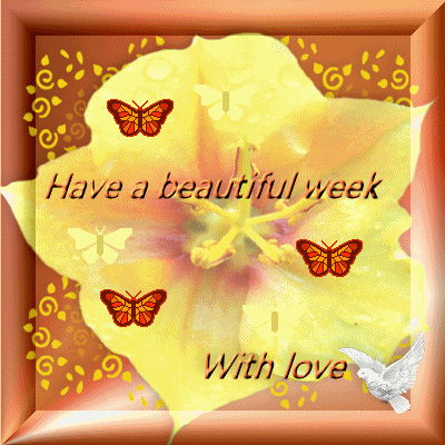 Have a lovely दिन and magical new week Berni