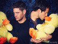 Jensen, Misha and Ducks!