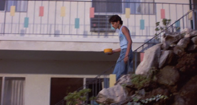 The Karate Kid wallpaper possibly containing a street, a front porch, and a brownstone called Karate Kid I