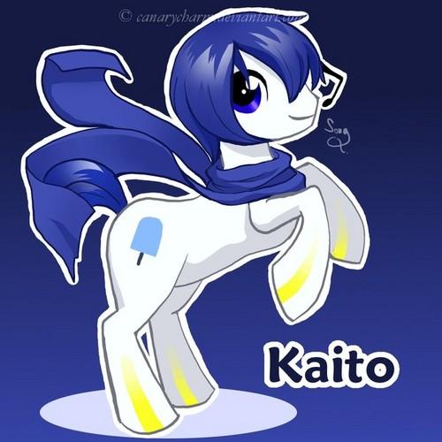Kaito as a pony.