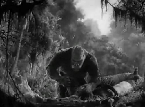 King Kong kills T-rex