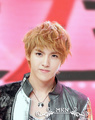 Kris - exo-m photo
