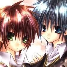 Lyoko's adn Akira's twin boys