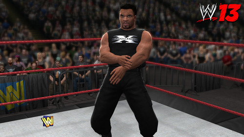 Mike Tyson-WWE 13' - wwe Photo