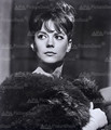 Nat in Gypsy - natalie-wood photo