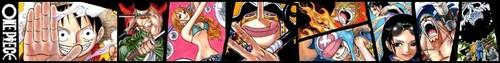 One Piece Banner: Post Time Skip