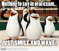 Oral exam... - penguins-of-madagascar photo