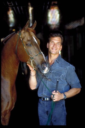 Patrick Swayze wallpaper with a horse trail, a horse wrangler, and a dressage called Patrick Swayze