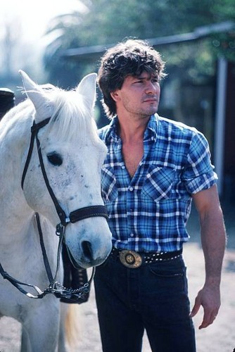 Patrick Swayze wallpaper containing a lippizan, a horse trail, and a horse wrangler called Patrick Swayze
